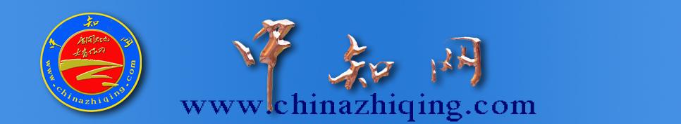 中国知青网